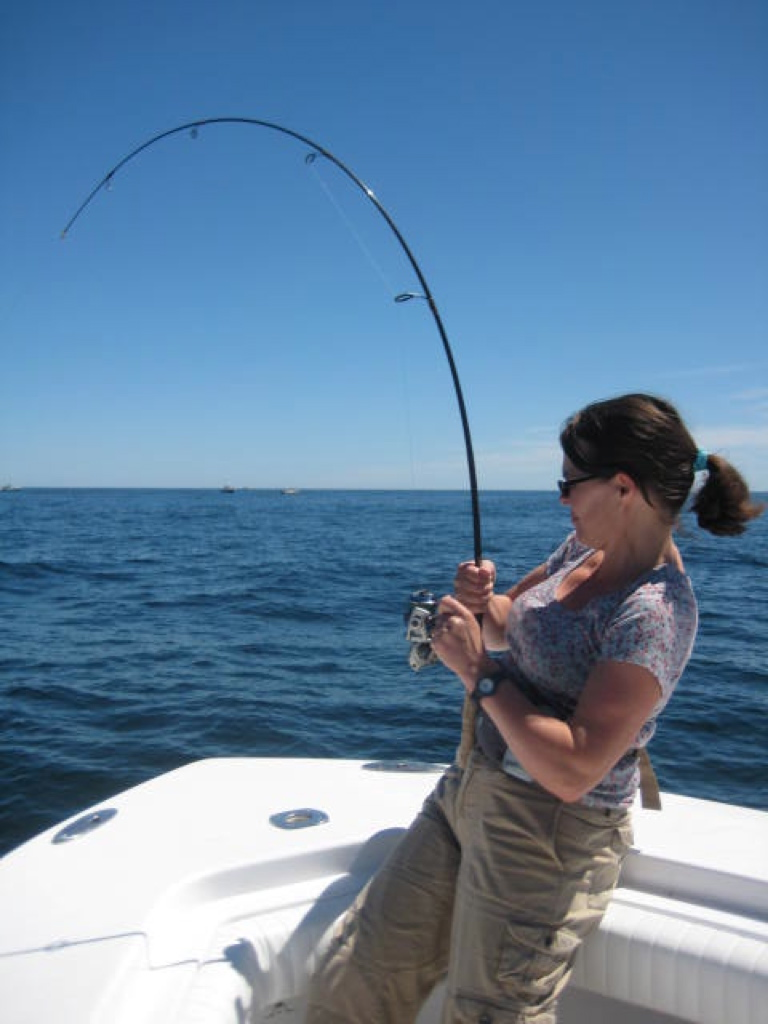 Fishing charters cape cod striped bass dragonfly for Striper fishing cape cod