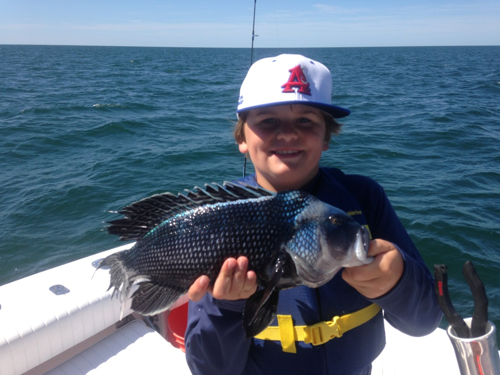 Fishing charters cape cod black sea bass dragonfly for Fishing cape cod