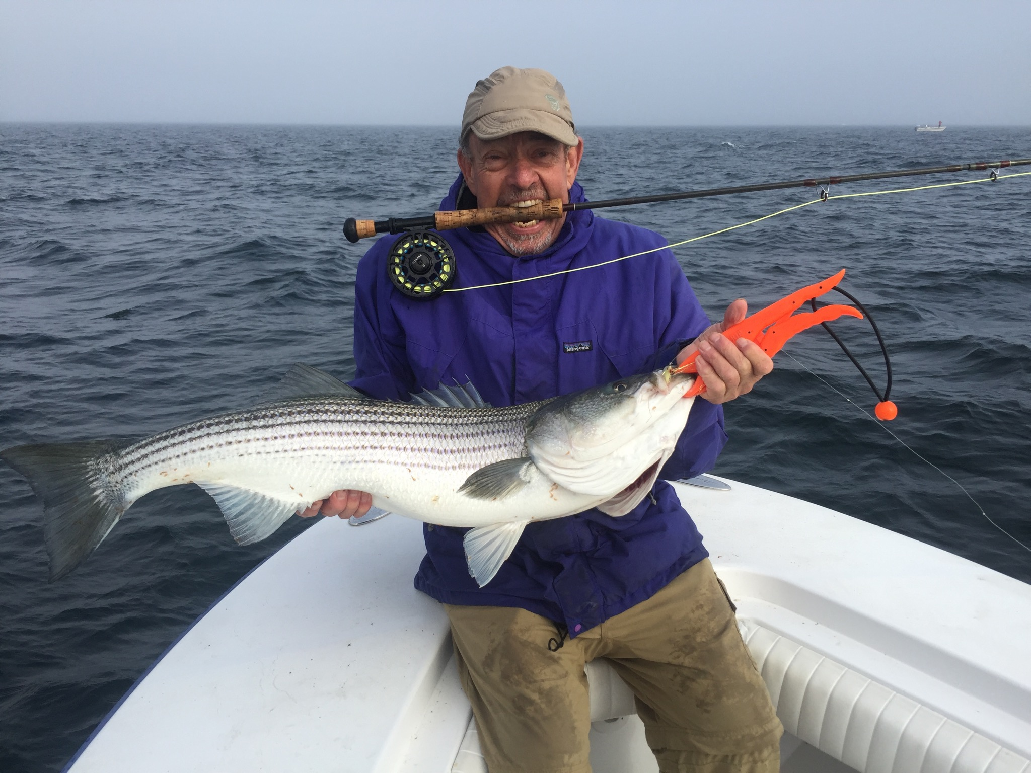 May stripers dragonfly sportfishing for Cape may fishing charters